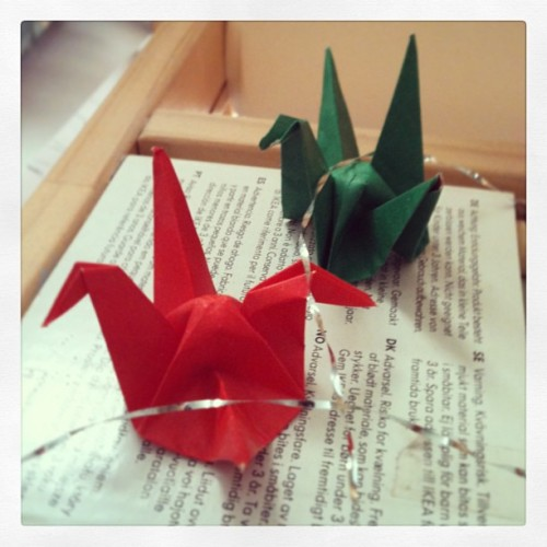 Origami Cranes by elodiebubble@instagram