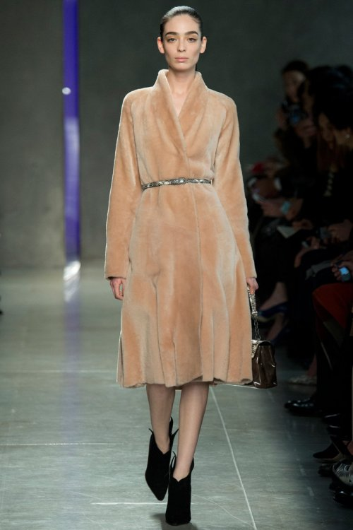Bottega Veneta Fall 2014 Runway picture from vogue.com