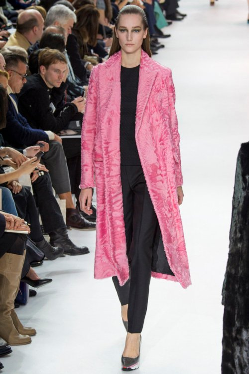 Christian Dior Fall 2014 Runway picture via vogue