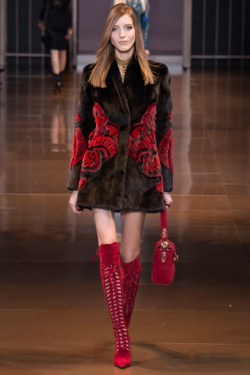 Versace Fall Runway picture via vogue
